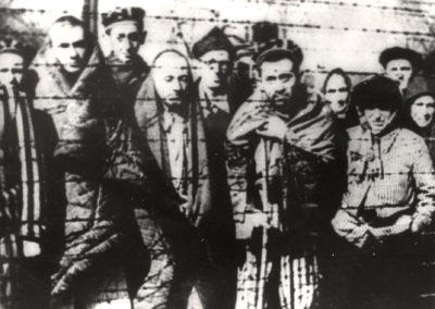 Auschwitz-Birkenau la Liberazione