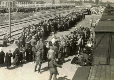 La rampa di Auschwitz, arrivo dei treni e la selezione